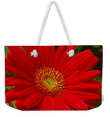Red Gerbera Daisy Weekender Tote Bag by James C Thomas