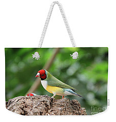Red Headed Gouldian Finch Weekender Tote Bag