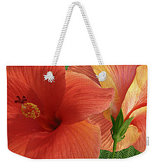 Weekender Tote Bag featuring the photograph Red Hibiscus by Ben and Raisa Gertsberg