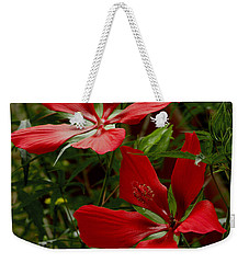 Red Hibiscus Blooms Weekender Tote Bag by James C Thomas