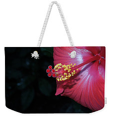 Weekender Tote Bag featuring the photograph Red Hibiscus by Ron Davidson