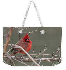 Red In Winter Weekender Tote Bag
