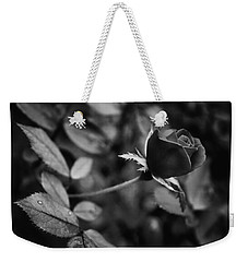 Weekender Tote Bag featuring the photograph Red Knockout Rose In Monochrome by Ben Shields