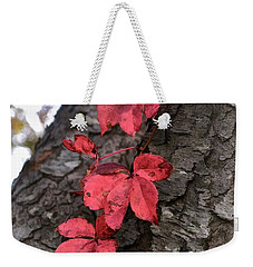 Red Leaves On Bark Weekender Tote Bag