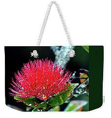 Red Lehua  Kawaiko'olihilihiokalikolehua Weekender Tote Bag by Lehua Pekelo-Stearns