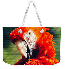 Red Macaw Closeup Weekender Tote Bag by Pati Photography