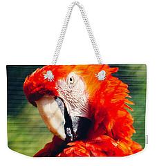 Red Macaw Closeup Weekender Tote Bag