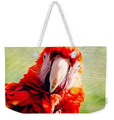 Red Macaw Weekender Tote Bag