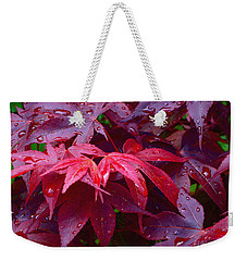 Weekender Tote Bag featuring the photograph Red Maple After Rain by Ann Horn