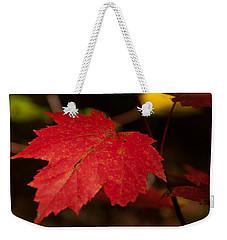 Red Maple Leaf In Fall Weekender Tote Bag