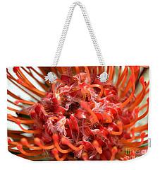 Red Pincushion Close Up Weekender Tote Bag