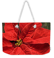 Red Poinsettia Plant For Christmas Weekender Tote Bag by Jane McIlroy