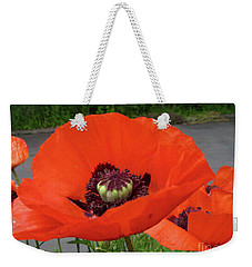 Weekender Tote Bag featuring the photograph Red Poppy by Barbara Griffin