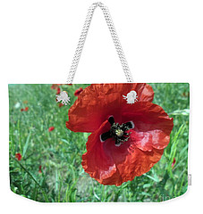 Weekender Tote Bag featuring the photograph Red Poppy by Vesna Martinjak