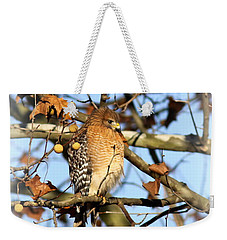 Red-shouldered Hawk - Img_7943 Weekender Tote Bag