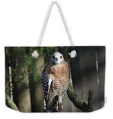 Weekender Tote Bag featuring the photograph Red Shouldered-hawk by Robert Meanor