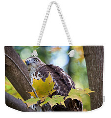 Weekender Tote Bag featuring the photograph Red Tail Hawk Closeup by Eleanor Abramson