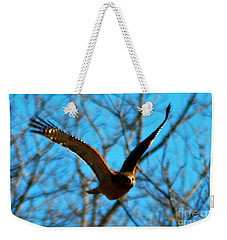 Weekender Tote Bag featuring the photograph Red Tail Hawk In Flight by Peggy Franz