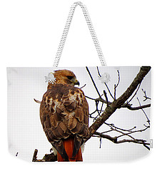 Red Tail Hawk In Winter Weekender Tote Bag