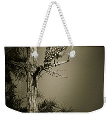 Red Tail Hawk On Loop Road Weekender Tote Bag