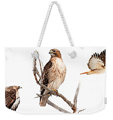 Red Tail Hawk Series Weekender Tote Bag