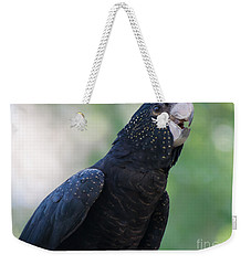 Red-tailed Black Cockatoo Weekender Tote Bag