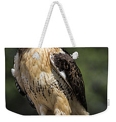 Red Tailed Hawk Weekender Tote Bag by Dale Kincaid