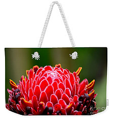 Red Torch Ginger Flower Head From Tropics Singapore Weekender Tote Bag