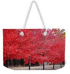 Red Tree Line Weekender Tote Bag