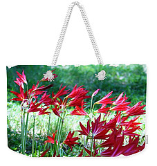 Red Trumpets Weekender Tote Bag by Ellen O'Reilly