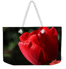 Weekender Tote Bag featuring the photograph Red Tulip by Todd Blanchard