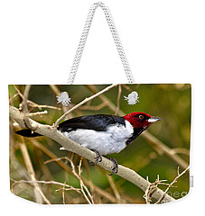 Redhead Weekender Tote Bag by Adam Olsen