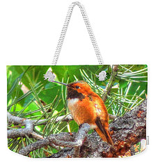 Redheaded Hummingbird II Weekender Tote Bag by Lanita Williams