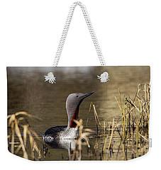 Redthroated Loon Weekender Tote Bag by Doug Lloyd
