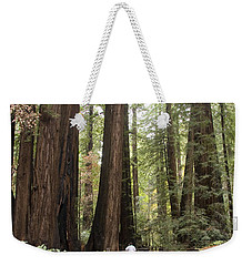 Redwood Trees Weekender Tote Bag