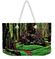 Redwoods Wonderland Weekender Tote Bag by Benjamin Yeager