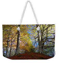 Weekender Tote Bag featuring the photograph Reelig Forest  by Gavin Macrae
