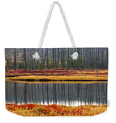 Reflections On The Snake Weekender Tote Bag
