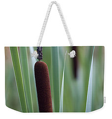 Regal American Cattails Weekender Tote Bag