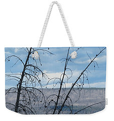 Weekender Tote Bag featuring the photograph Remnants Of The Fire by Laurel Powell
