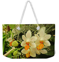 Renewal Weekender Tote Bag by Rodney Lee Williams