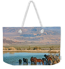 Weekender Tote Bag featuring the photograph Rest Stop by Tammy Espino