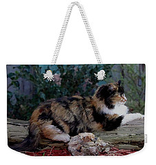 Resting Calico Cat Weekender Tote Bag