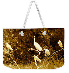 Resting Flock Sepia Weekender Tote Bag by Anita Lewis