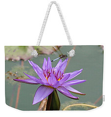 Resting Time Weekender Tote Bag by Karen Silvestri