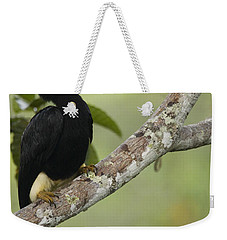 Rhinoceros Hornbill Female Sepilok Weekender Tote Bag