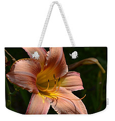Weekender Tote Bag featuring the photograph Rich Day by Larry Bishop