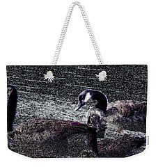 Weekender Tote Bag featuring the photograph Right Behind Ya   by Lesa Fine