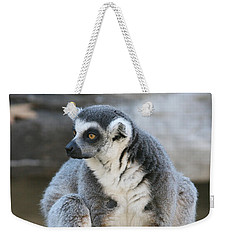 Weekender Tote Bag featuring the photograph Ring-tailed Lemur #3 by Judy Whitton