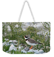 Ringed Plover On Rocky Shore Weekender Tote Bag